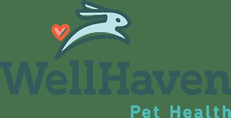 The Bridge Club Spotlights Veterinary Nurse/Technician Career Options